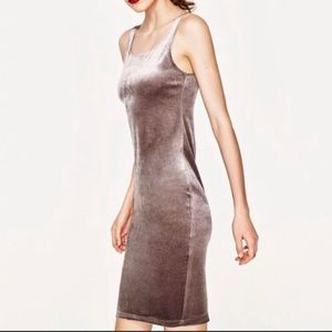 Zara Trafaluc | Gray velvet bodycon tank top dress